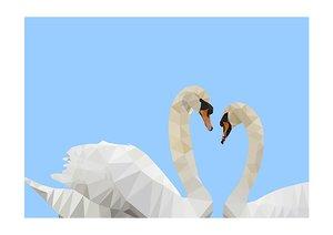 Swans, Print A3