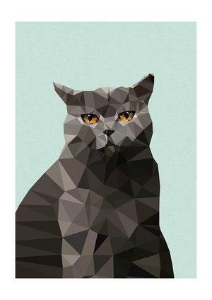 Cat British Blue, Print A3