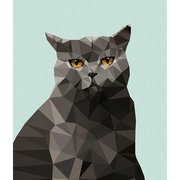 Cat British Blue, Print A3