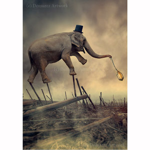 Ionut Caras, Greeting Card