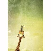 Janine Graf Greeting card
